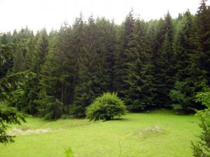 The Rhodope Mountains